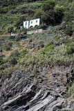 1580 D'couverte des Cinque Terre - IMG_4489_DxO Pbase.jpg