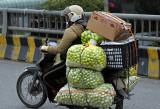 Two weeks discovering Vietnam - Deux semaines à la découverte du Vietnam