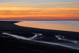 Observations d'un groupe de phoques en fin de journée près du port du Hourdel