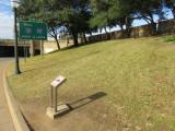 Dallas the grassy knoll