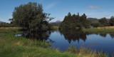Ben Lomond and the Endrick Water at RSPB Loch Lomond