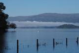 Misty morning at RSPB Loch Lomond