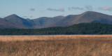 Glen Luss hills from Ring Point at RSPB Loch Lomond