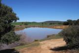 The irrigation reservoir, Peñalajo