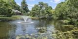 A Family's Pond
