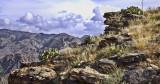 Prickly Pear Cactus, Sabino Canyon