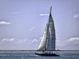 Sailing on a Nice Day