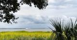 Waterfront View,  Charleston, SC