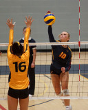 Queen's vs Waterloo W-Volleyball 10-05-19