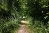 2020 Hiking around lake Wintergreen CT