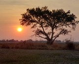 Another Kafue Sunrise