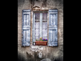 Blue shutters and orange flowers
