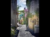 Olive Oil Hotel-Bormes les Mimosa