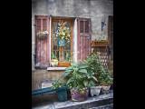 Window of Flowers - Garde la Freinet