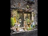 Front Garden - Vence