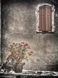Windows of Provence