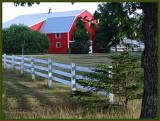 A Wonderful Red Barn
