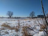 Froide journée sur le Saint-Laurent - Cold day on the Saint-Lawrence River !