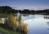 Sidelit lake scene