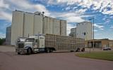 Rock Rapids, Iowa Grain Elevator Complex.