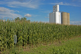 iowa_grain_elevators
