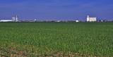 Hooker, Oklahoma East looking West-Grain Elevators.