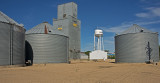 Westbrook, Minnesota Newer Wood Grain Elevator with Metal Siding.