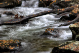 Mountain Streams and Rivers