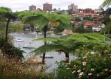 Mosman Bay – garden view