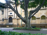 0423: Mitchell Library
