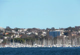 Moored yachts in Rose Bay