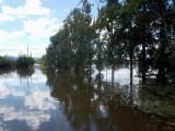 Hawkesbury in flood at Richmond