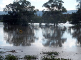 Hawkesbury in flood at Richmond