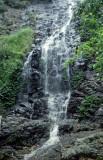 Falls 1, Dorrigo NP