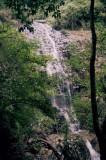 Falls 2, Dorrigo NP