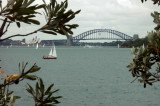 Hermitage Foreshore Walk (17 pictures)