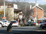 Old mining towns of NSW