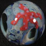 #65: Starfish Cave Size: 1.52 Price: $50