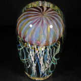 #481: Richard Satava, Purp Cap Moon Jelly Size: 2.77 W x 5.59 H Price: $300