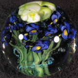 Greg Chase Marbles For Sale