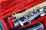 clarinet in red.JPG