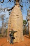 Je donne un Câlin au Baobab rouge