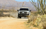 A Border Patrol vehicle on the Pronghorn Loop road in Buenos Aires NWR