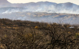 Smoke rises from the prescribed burn in Buenos Aires NWR