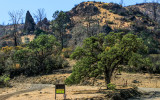 Berryessa Snow Mountain National Monument – California