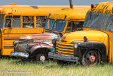 Old Chevy School Buses