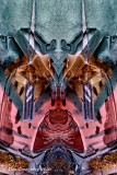 ... Abstracts, Montages and Some Insanity ...