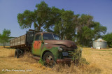 1950-53 Chevy Farm Truck