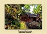 Parque Nacional Arrayanes 2020 - Bariloche ARGENTINA