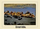 Peninsula Valdes 2020 ARGENTINA